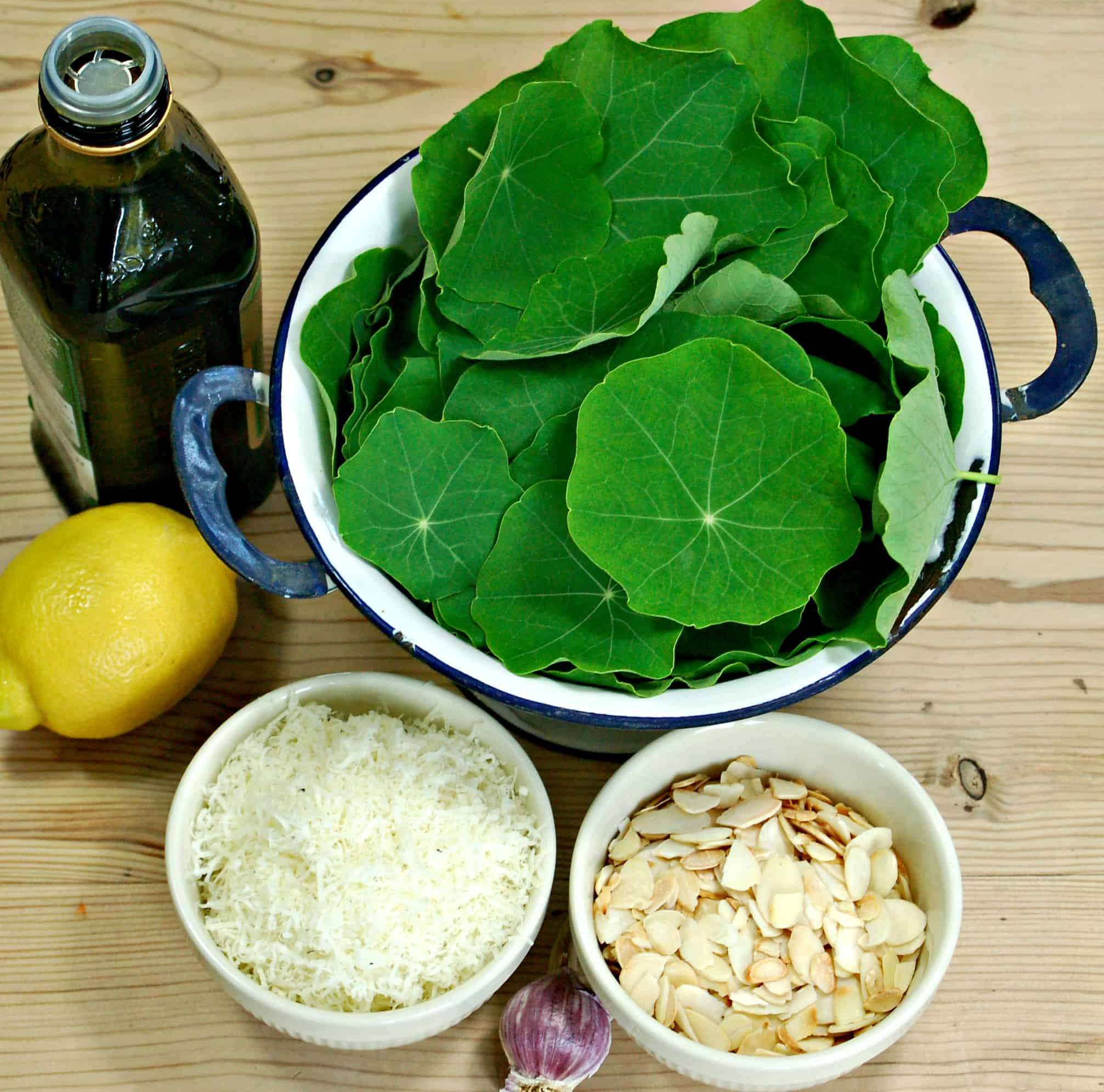 The wonderful peppery flavour of Nasturtium leaves works really well in this simple and quick pesto recipe, which you could easily adapt for other leaves.