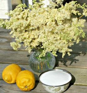 Meadowsweet Cordial - you will need
