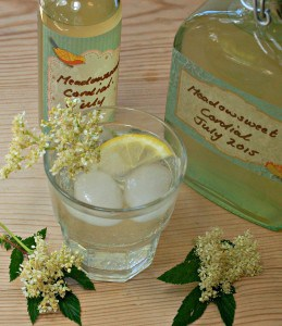 Meadowsweet cordial - july 2015
