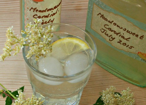 Meadowsweet Cordial | Craft Invaders. Traditionally used to flavour Mead, fragrant, sweet & with a delicate almondiness, Meadowsweet is easily one of the most overlooked of all herbs.This tutorial shows us making a simple but truly delicious cordial from it. This cordial is lovely diluted with sparkling water, and served with ice. It can also be used to make delicious cocktails!
