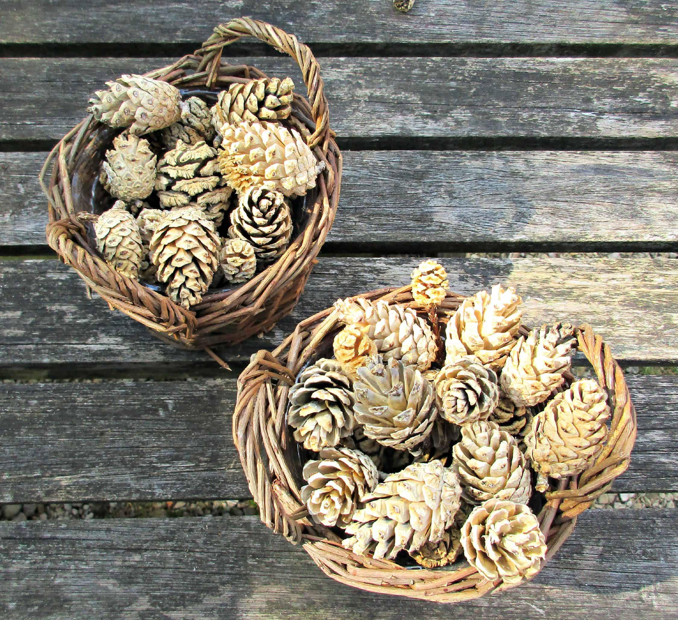 Поделки из отбеленных сосновых шишек