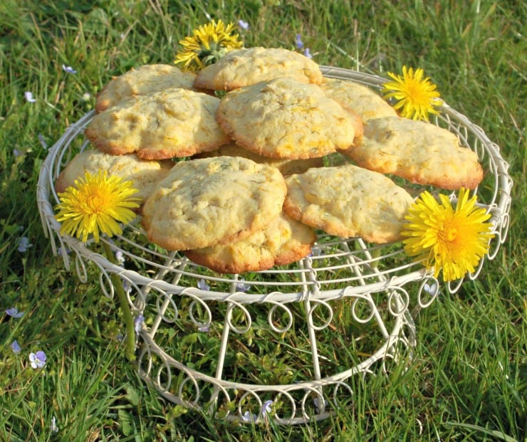 Foraged Dandelion and Lemon Biscuits, Cookies