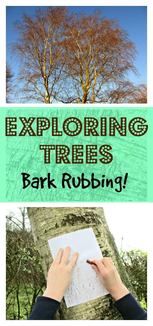 Exploring Trees - bark Rubbing