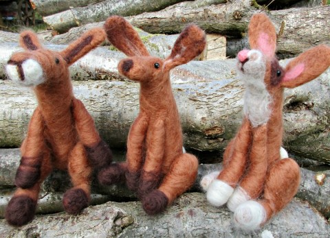 Our completed Hares