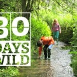 The Wildlife Trusts are challenging us all to join in with their #30DaysWild Campaign, and to feel happier, healthier and more conected to nature by doing something wild every day, for the 30 days of June.