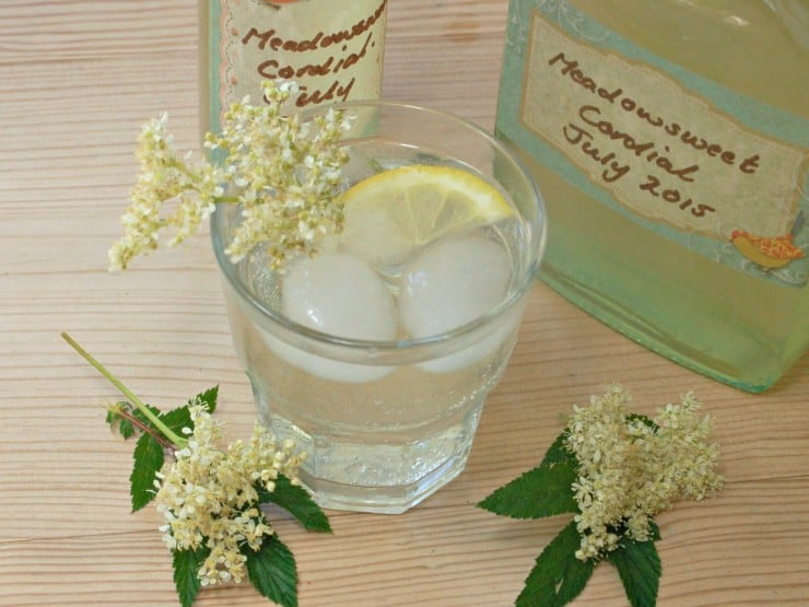 Meadowsweet is just starting to flower in our hedgerows. It is a wonderful herb, with a beautiful fragrance, which, in my opinion, easily rivals that of elderflower. We first published this delicious Medowsweet Cordial recipe last year, but have updated it to share with you for #30DaysWild