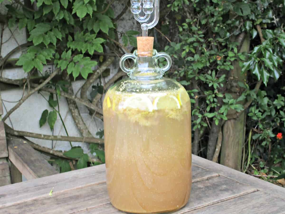 Mead is the oldest alcoholic drink known to man. It is made from honey and water, and is fermented through the action of yeast. Here we try out making it at home using Meadowsweet flowers picked from our hedgerows.