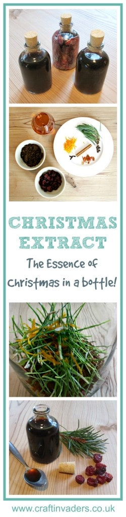 Our Christmas Extract captures the wonderful smell and taste of Christmas in a bottle. Use in cakes, cookies, pies and cocktails. Our own original recipe - the true essence of Christmas!