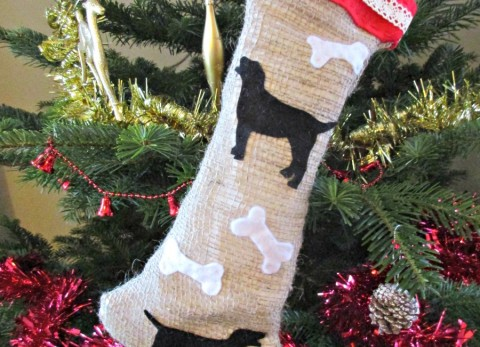 Our easy to follow tutorial to make a dog stocking stuffed with healthy homemade dog biscuits - A perfect Christmas present for your favourite pooch!