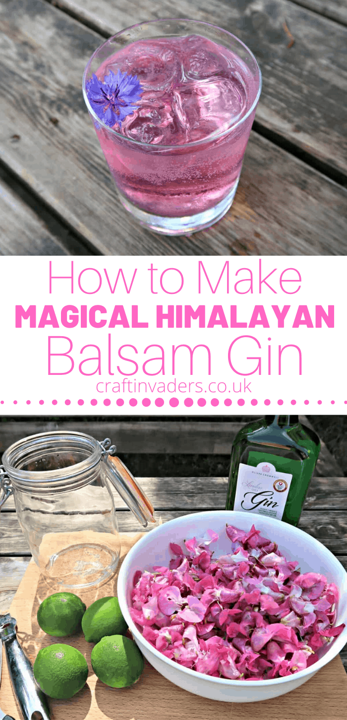 When I set out to create this Himalayan Balsam Gin recipe I had no idea of the surprise that was lying in wait for me. Read on to discover how to make a genuinely magical colour changing gin infusion.