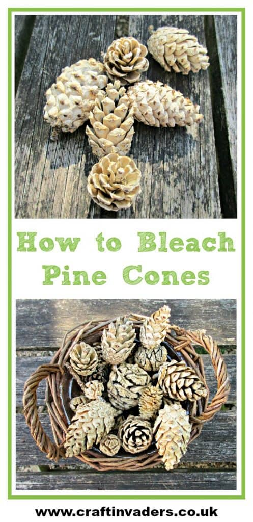 We test out bleaching pine cones at home. Does it really work and how long does it take? We have all the answers here! See our bleached pine cones turned into a beautiful centre-piece. We think they would be perfect to use in winter crafts and for Christmas decorations.