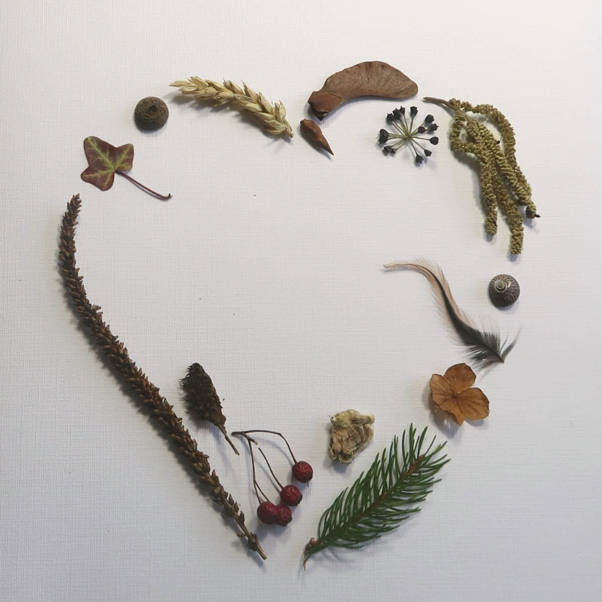 This beautiful heart collage proves that nature collages aren't just for kids. It couldn't be simpler to make, and the result is truly stunning. Nature really is the star of the show in this gorgeous Valentines gift. #NatureCollage #HeartCollage #HeartPicture #Valentines