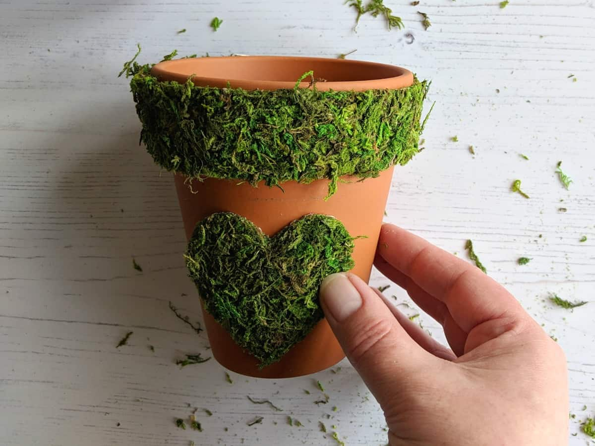 Moss covered flower pots are a fab way to introduce a moss décor vibe to your home. Many mosses are protected here in the UK so am delighted to have found a preserved moss sheet which is perfect to use for crafts. #Supermoss #mossart #mossplanter #mosscrafts