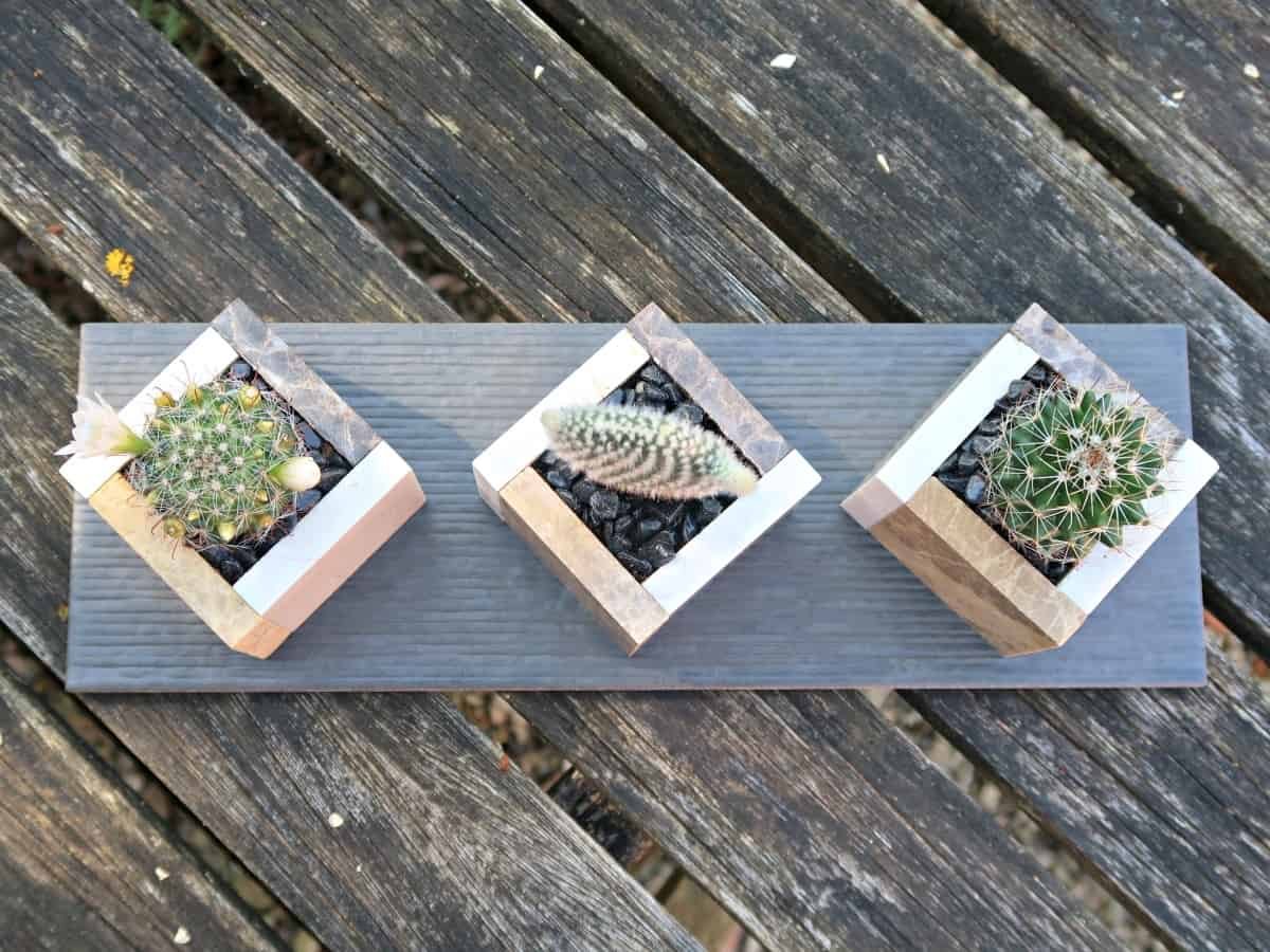 Square pots made from ceramic tiles are perfect for displaying mini cactus and succulents. In this tutorial, we show you how to make a stylish window sill planter to display your miniature plants. #CactusGarden #CactusPlanter #IndoorCactus #SucculentGarden #SucculentPot #Houseplants