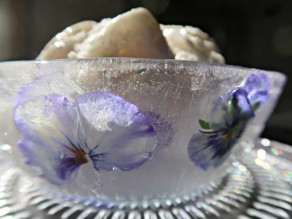 Ice bowls make a fun and elegant centrepiece for a party and making them couldn't be more straightforward with our Blu Tack Hack.