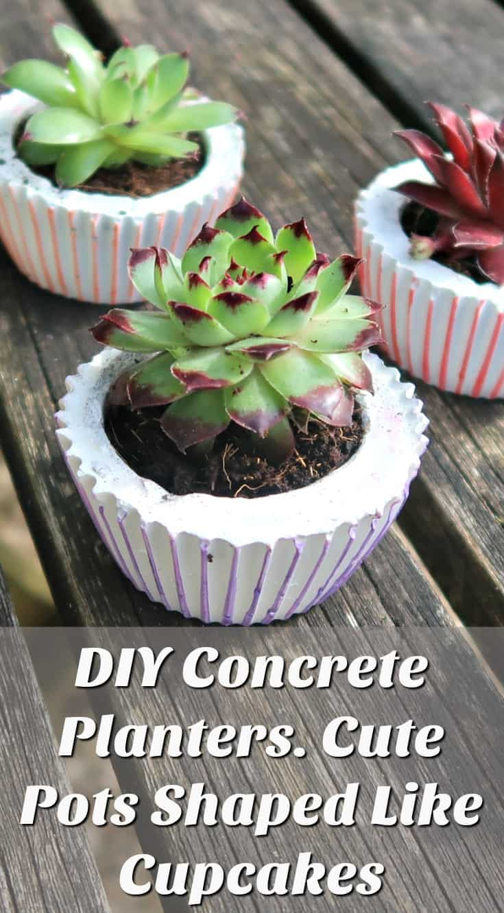 The beauty of DIY concrete planters is they can be made in all sorts of shapes and sizes. Here we show you how to make cute little cement pots cast in silicone cupcake cases. These gorgeous cupcake planters are perfect for using as succulent party favours (if you can bring yourself to give them away), or as a unique table centrepiece.