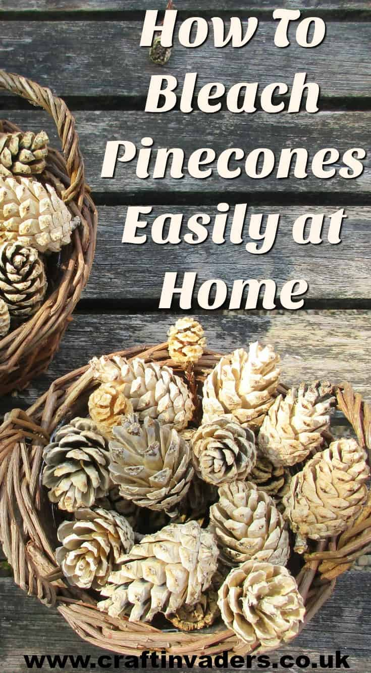 We test out how to bleach pine cones at home. Does it really work and how long does it take? We have all the answers here! See our bleached pine cones turned into a beautiful centre-piece.