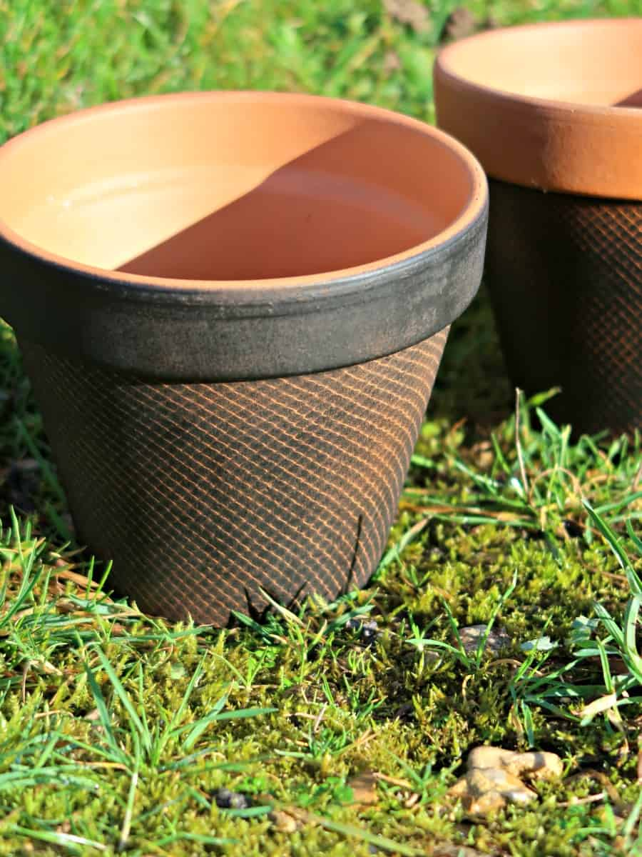 In this tutorial, we show you a fun way to use the netting bags that onions come in to decorate terracotta pots.