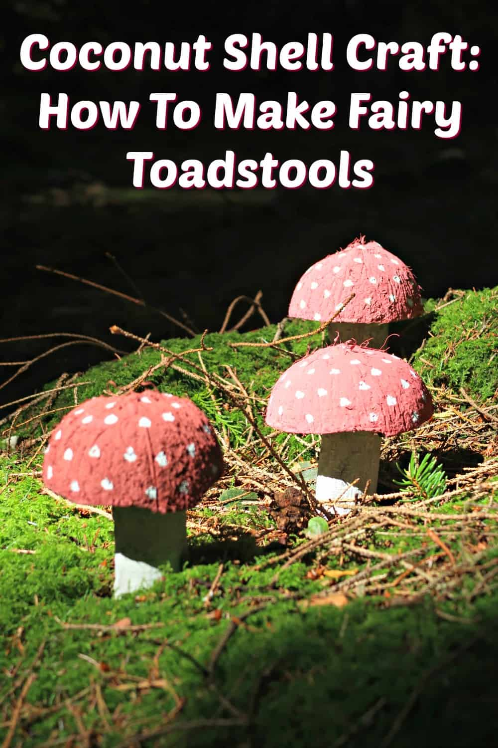 In this simple coconut shell craft we make gorgeous fairy toadstools for our garden using non-toxic paint to keep them environmentally friendly.